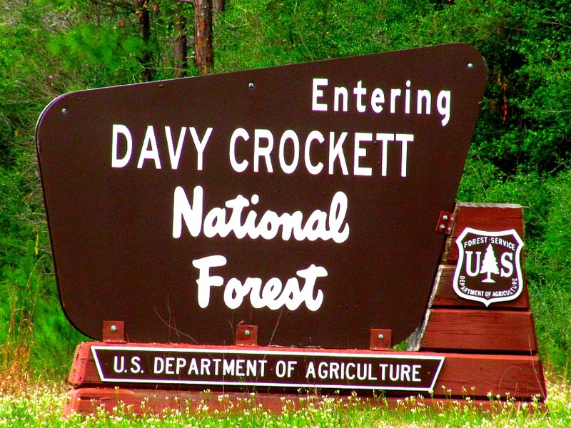 Welcome to Davy Crockett National Forest