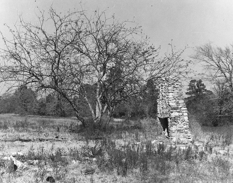 Newport fireplace ruins