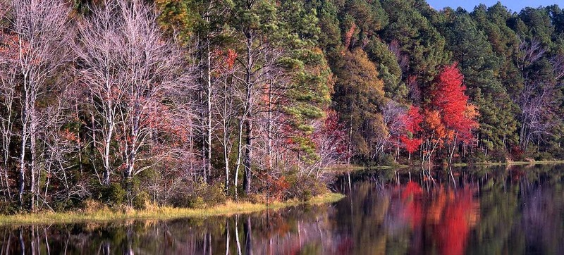 Daingerfield State Park in Spring